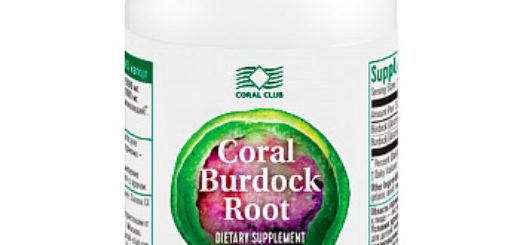 burdock root coral_club